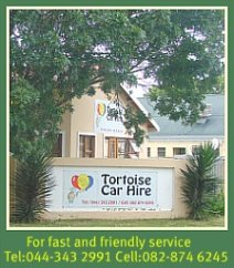 Tortoise Car Hire