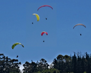 Paragliding above Cloud 9, Sedgefield
