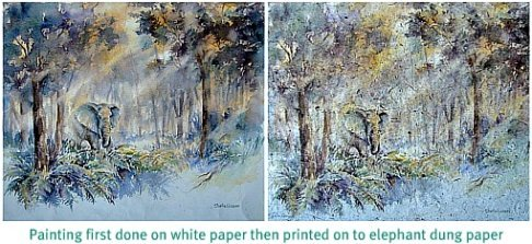 Sheila's Matriarch of Knysna Forest painting