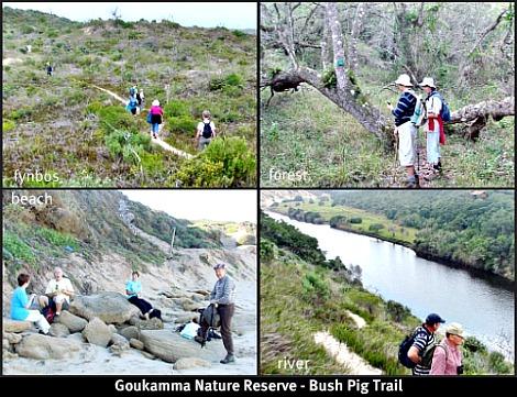 Goukamma Bush Pig Trail