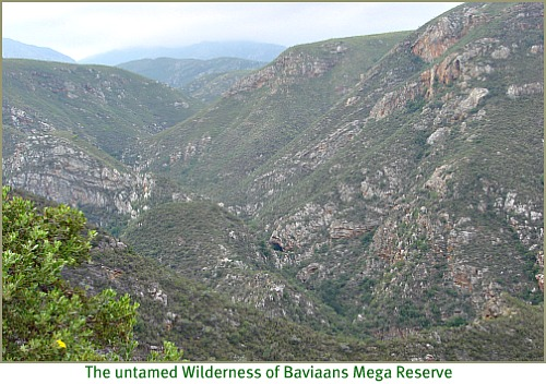Wilderness of Baviaanskloof Mega-Reserve