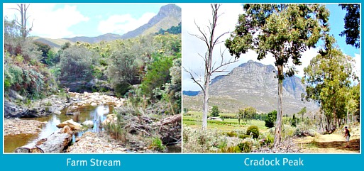 Cradock Peak