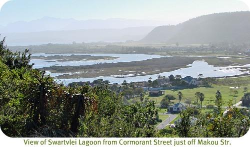 Swartvlei Lagoon view