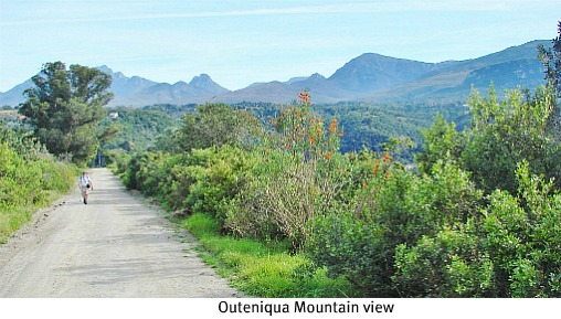 View of Outeniqua Mts