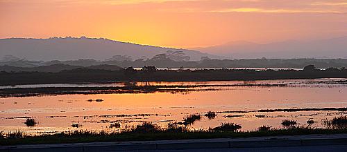 Sunset over Swartvlei Lagoon.