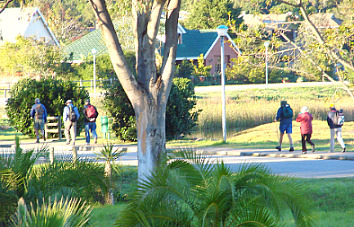 Walkers on guided trail