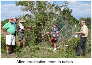 Alien eradication team