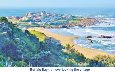 Trail view of Buffalo Bay