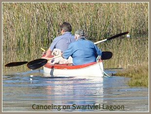 Two men and their dog canoeing on the Swartvlei Lagoon