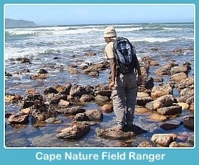 Cape Nature Field Ranger at Buffalo Bay