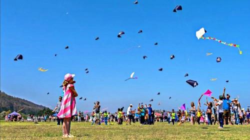 Award winning photo of the Eden Kite Festival