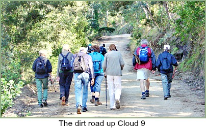 Dirt Road over Cloud 9