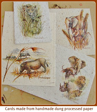 Sheila's art on dung paper