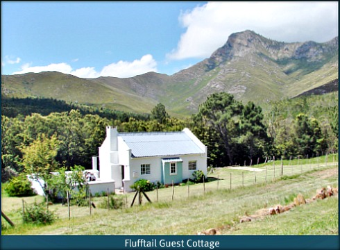 Flufftail Guest Cottage