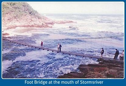 Storms River Suspension Bridge