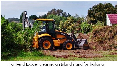 Clearing vegetation for building