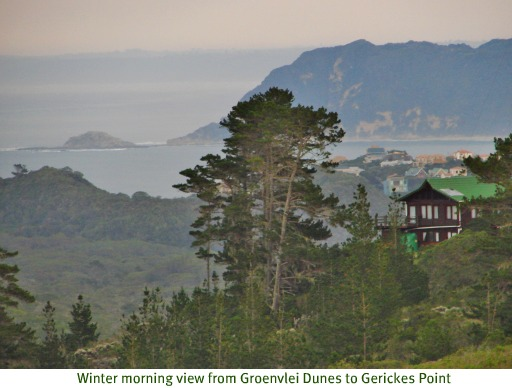 Dune view to Gerickes Point