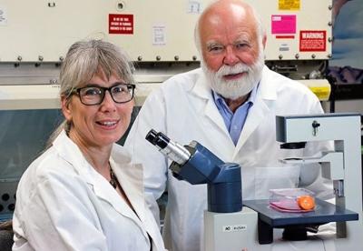 Immunisation Experts Wisconson