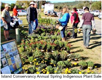 Spring Indigenous Plant Sale