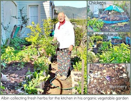 Albin Kilzer collecting fresh herbs from his garden.