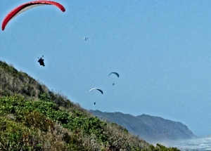 Discover Sedgefield - Paragliding from Kleinkrans