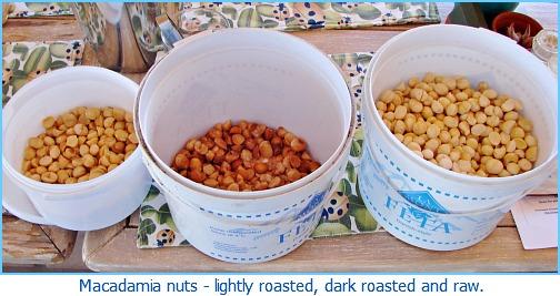 3 typesmacadamia nuts