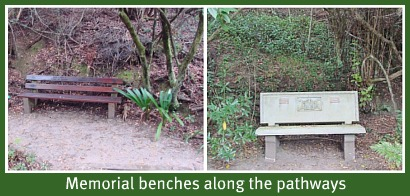 Memorial benches in restful places
