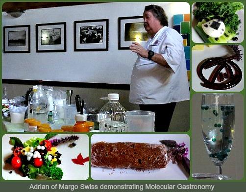 Adrian explaining molecular gastronomy