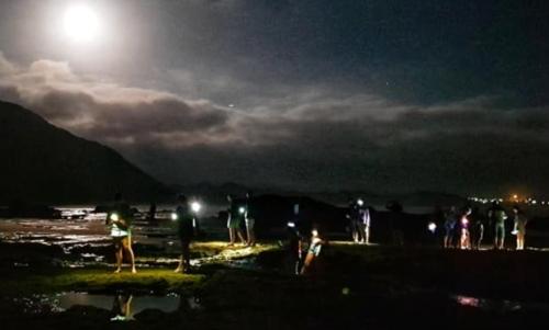 Moonlight Meander at Gerickes