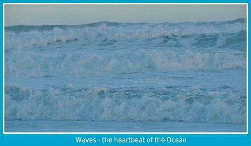 Waves - the oceans' heartbeat