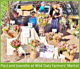 Paul and Jeanette at the Saturday Wild Oats Farmers' Market at Sedgefield