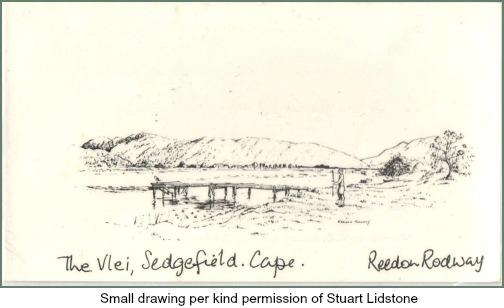Reedon Rodway's Vlei drawing
