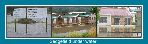 Flooding in Sedgefield