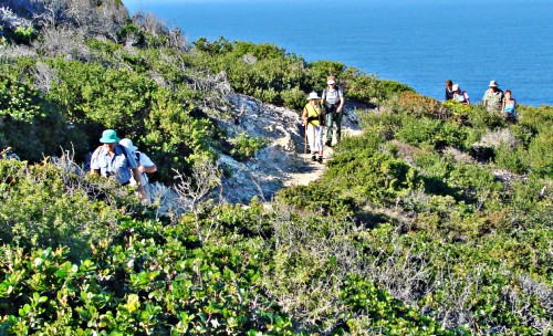 St Blaize Trail along the cliffs from Mossel Bay