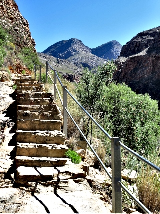 Stone Steps on the pathway to the Waterfall