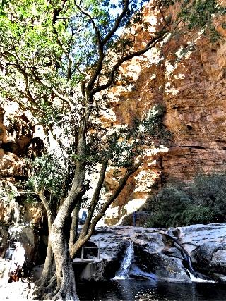 Stream running over rocks just below the waterfall