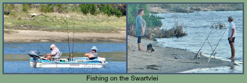 Couples fishing on the Swartvlei Lagoon in the vicinity of the Island.