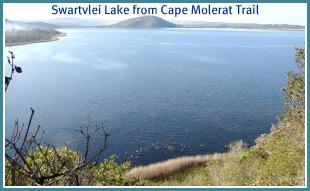 Vast Swartvlei Lake