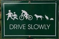 Traffic calming sign