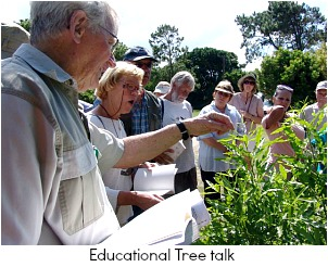 Educational tree talk