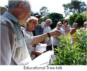 Educational tree talk