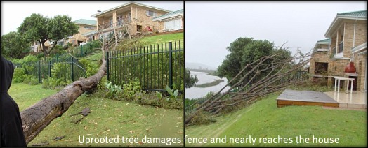 Damage to fence on Heron Walk