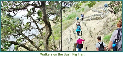 walkers on the trail