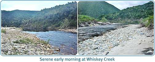 Whiskey Creek morning