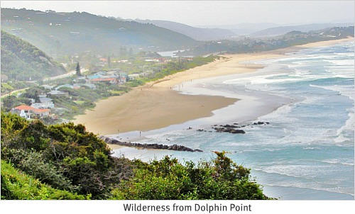 Dolphin Point View of Wilderness