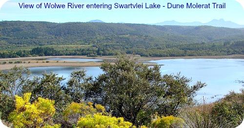 Wolve tributary entering Swartvlei Lake
