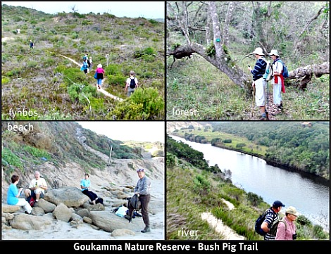 Goukamma Bush Pig Trail