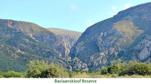 Magnificent and untamed Baviaanskloof