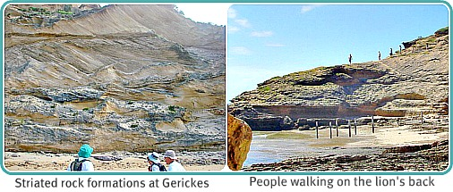 Gerickes lion and striated dune cliff
