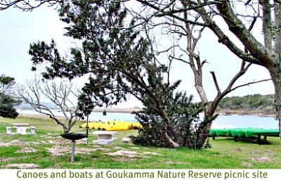 Goukamma picnic site